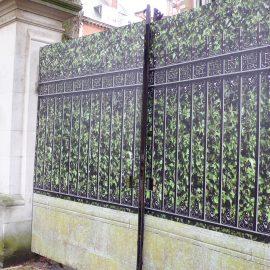 Hedge & Railing 2