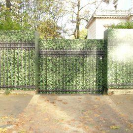 Hedge & Railing 1